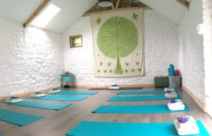 inside yoga barn